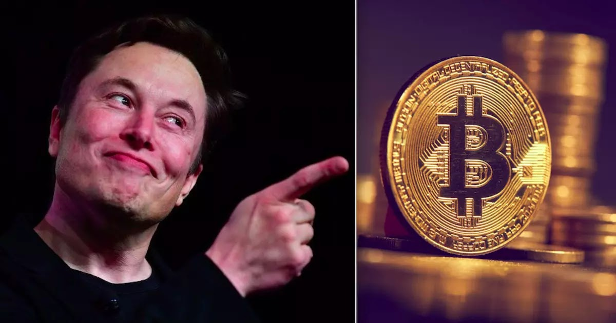 Bitcoin Price Soars After Elon Musk's Tesla Buys $1.5 Billion Worth Of The Digital Currency