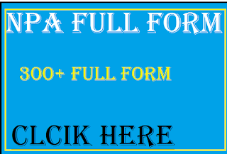 npa full form