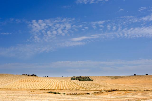 Panorama in Basilicata. Fotografia di Giovanni Battisti