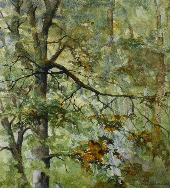Американская художница. Ann Vaillencourt 3