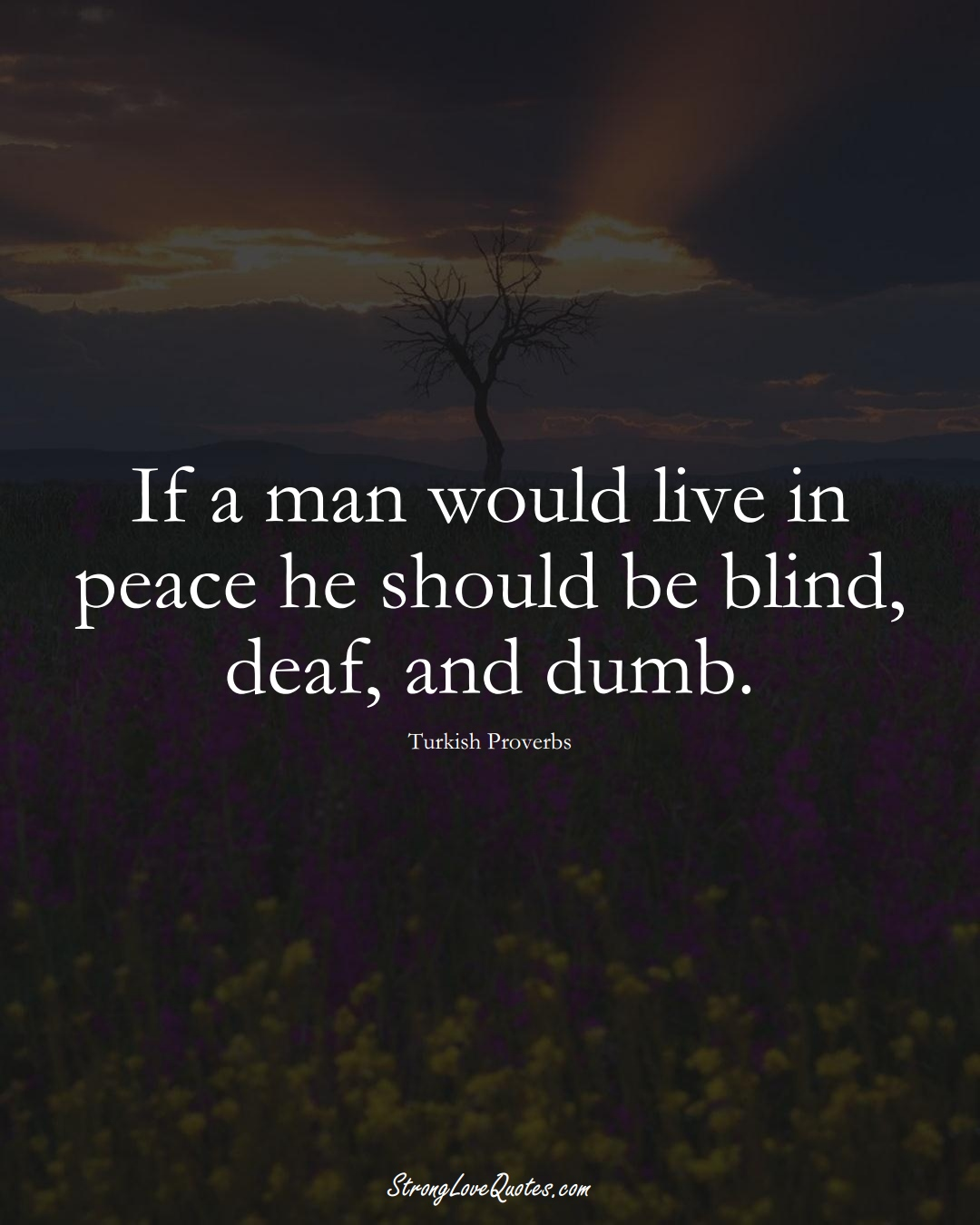 If a man would live in peace he should be blind, deaf, and dumb. (Turkish Sayings);  #MiddleEasternSayings
