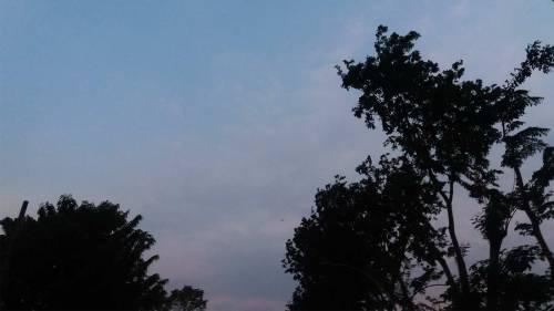 langit surabaya