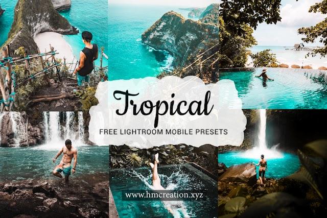 Tropical lightroom presets and lightroom mobile presets free download