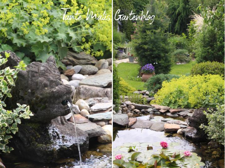 Gartenteich und Garten im Juni