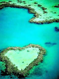 بركة مياة بها شعاب مرجانية على شكل قلب