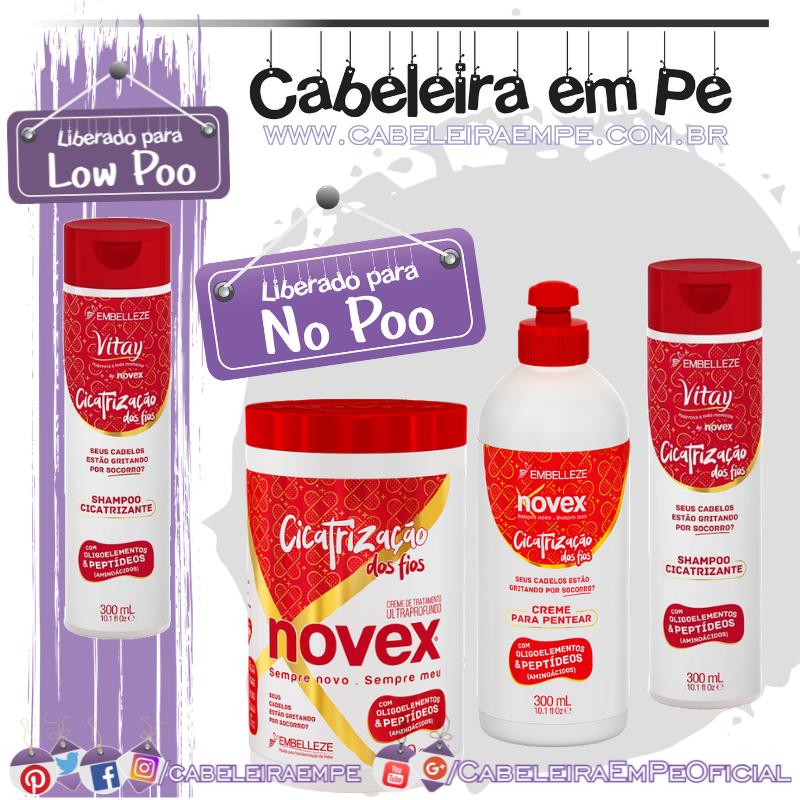 Shampoo (Liberado para Low Poo), Condicionador, Máscara e Creme para Pentear (Liberados para No Poo) Cicatrização dos Fios - Novex