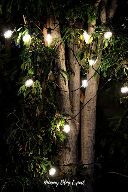 Decorating Your Garden With String Lights