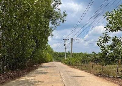 bán nhà vườn xã Xuân Trường