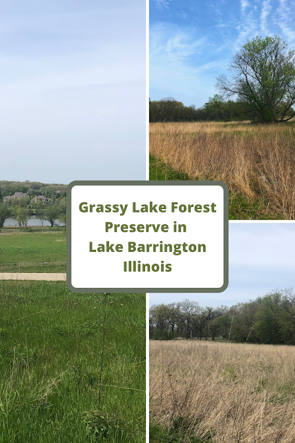 Hiking to a Spectacular View at Grassy Lake Forest Preserve in Lake Barrington, IL