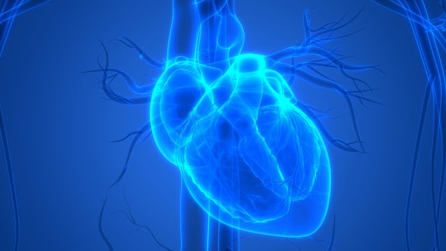 Patients with Congenital Heart Disease Suffer From High Rates of  Early Vascular Ageing