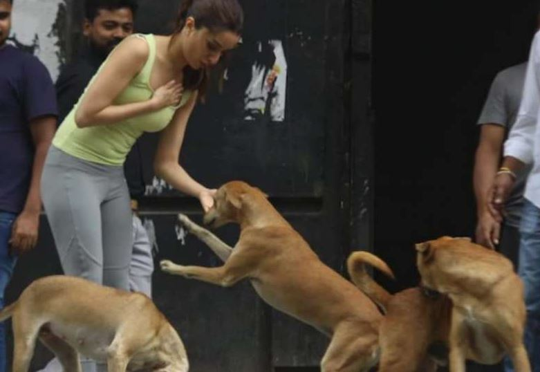 shraddha kapoor and dog