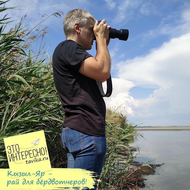озеро Кызыл-Яр рай для бердвотчеров