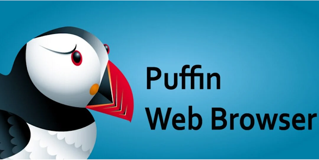 Puffin Browser Pro APK v9.3.1.50898