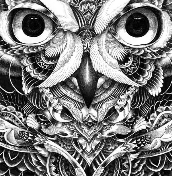 17-Iain-Macarthur-Precision-in-Surreal-Wildlife-Animals-Drawings-www-designstack-co