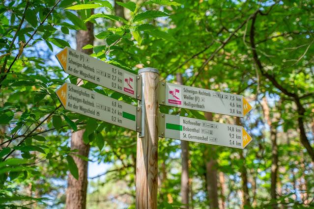 Grenzlandtour Schweigen-Rechtenbach   Bad Bergzaberner Land   Wandern Südliche Weinstraße 11