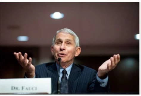 Fauci, an American pathologist, says the vaccine is due in early December