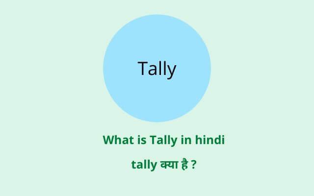 tally in hindi