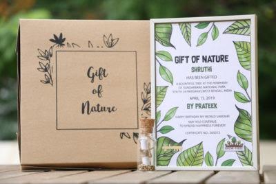 Diwali haul, gift, hamper, e-commerce website