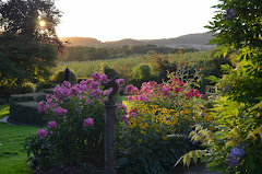 Shortlisted in The Nation's Favourite Garden Competition 2021