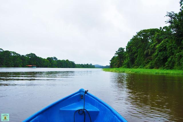Paseo en barca entre los canales de Tortuguero, Costa Rica