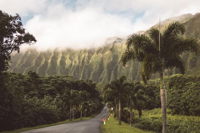 Hawaje wyspa OAHU - ile wydałam /KOSZTORYS, miejsca które odwiedziłam oraz parę wskazówek praktycznych  - Czytaj więcej
