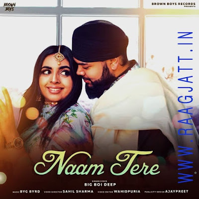 Naam Tere by Big Boi Deep lyrics