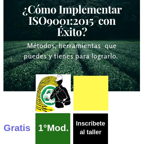 Taller presencial: ¿Cómo Implementar ISO 9001:2015 con Éxito?