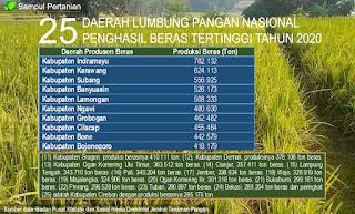 Inilah 25 Daerah lumbung pangan nasional produsen beras terbesar Indonesia ditahun 2020