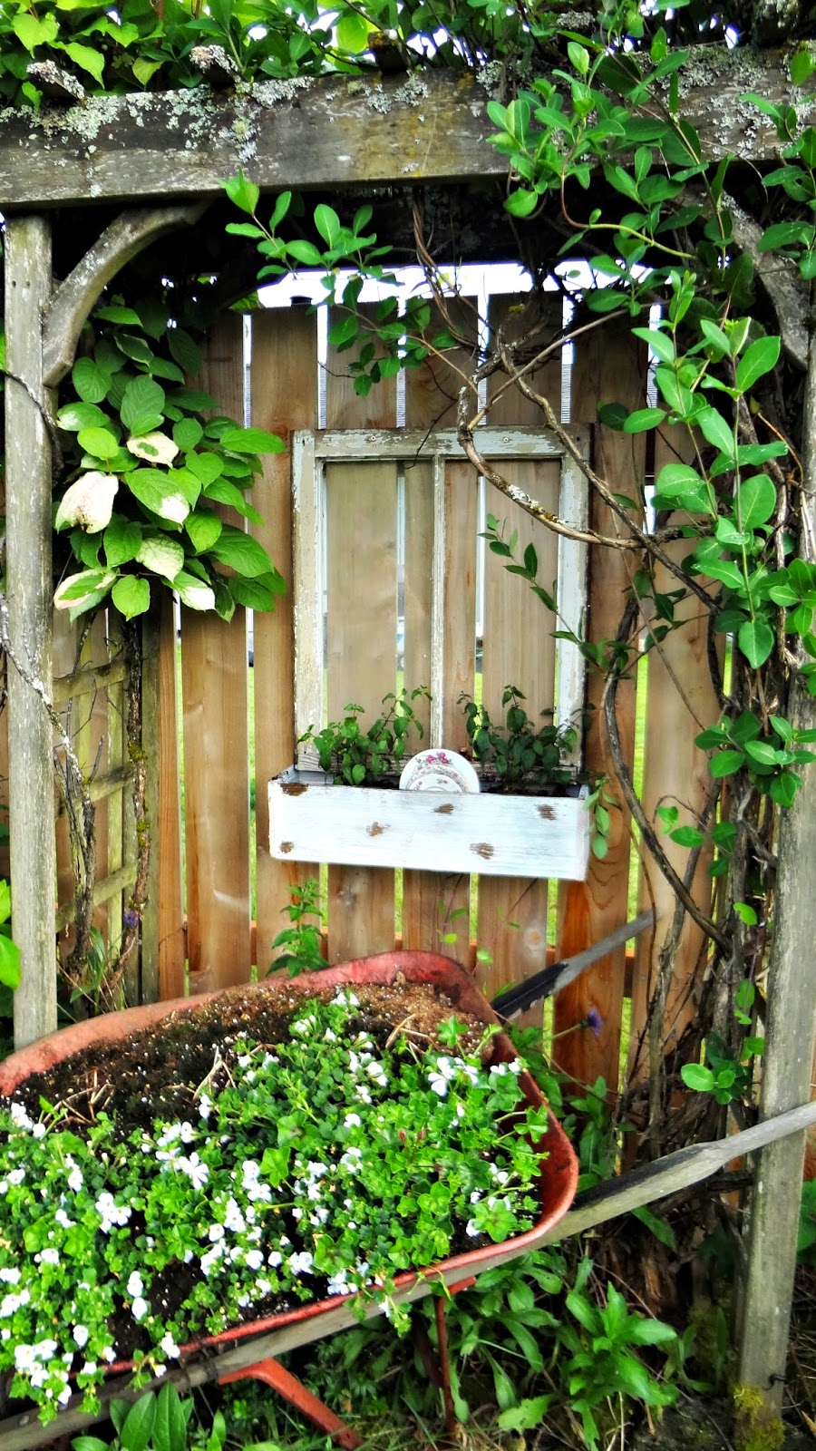 For The Love Of White Shabby Chic Gardening