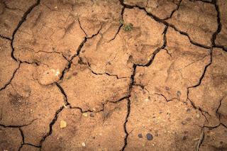Apa penyebab Kelangkaan Sumber daya