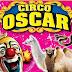 Circo fermo a San Bonifacio, l'appello degli Orfei: «Aiutateci»