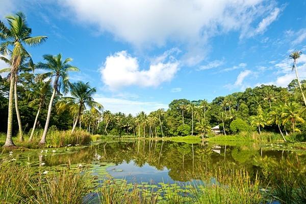wisata alam di singapura