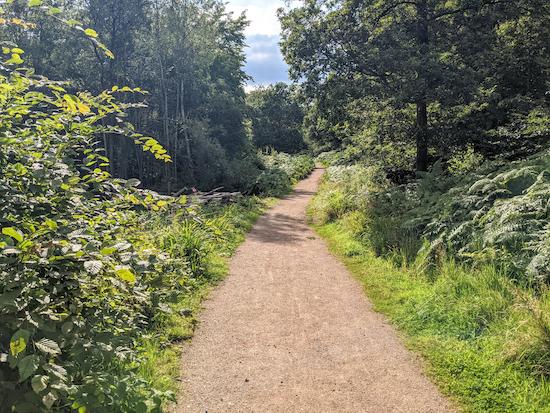 Broxbourne Woods NNR Trail heading W