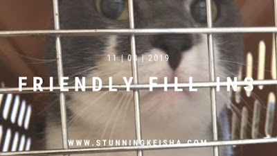 Feral Friday: Drugged and Dragged to the Vet