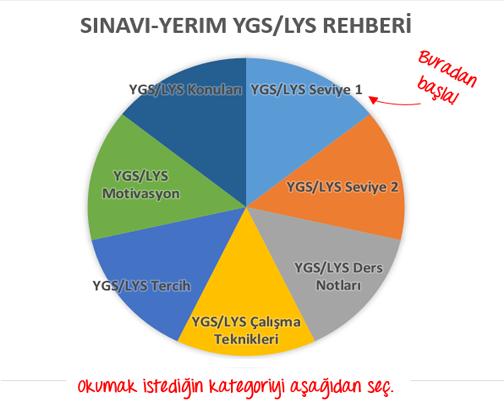 Sınavı-Yerim YGS LYS Rehberi