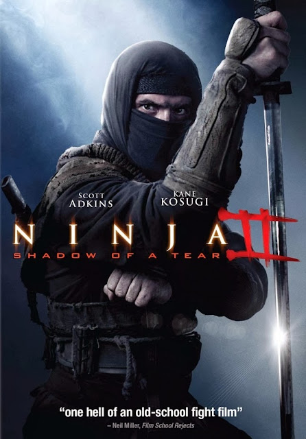 Ninja Shadow of a Tear 2013 HDRip 700MB