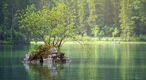 Pengertian Daerah Aliran Sungai (DAS) yang pernah dikemukakan oleh berbagai ahli memiliki definisi yang berbeda-beda. Pengertian DAS tersebut di rangkum oleh Zega Hutan sebanyak 17 pengertian dari berbagai literatur seperti buku, jurnal, undang-undang, dan literatur ilmiah lainnya.