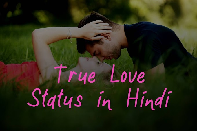 (BEST) True Love Status in Hindi with image