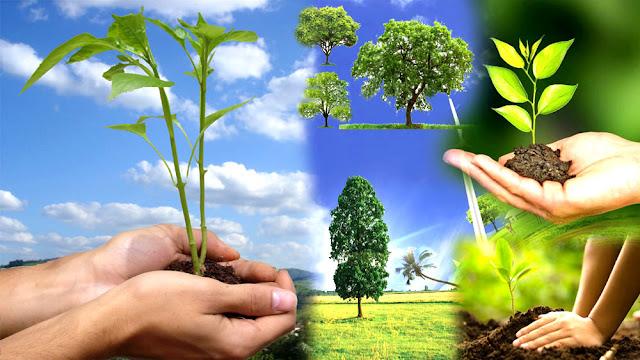 environment studies hindi notes -पर्यावरण अध्ययन हिंदी नोट्स एक क्लिक में डाउनलोड करें