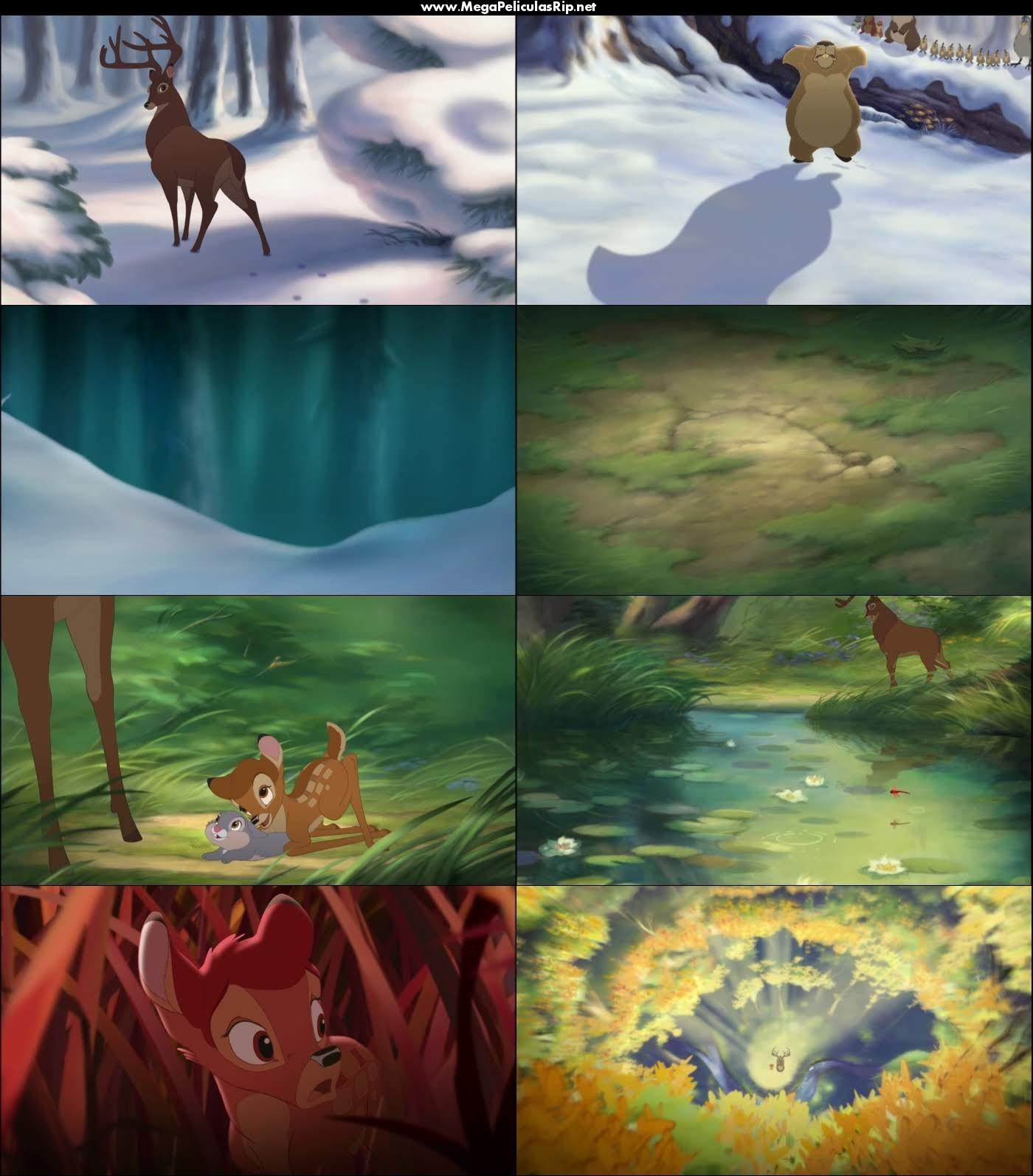 Bambi 2 1080p Latino