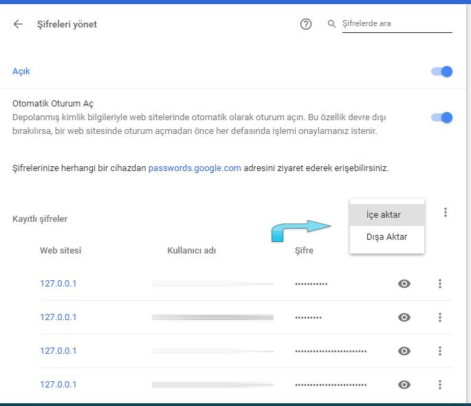 Google chrome'da şifrelerinizi dışa yada içe aktarma butonları