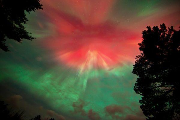 aurora very dark red - photo #24