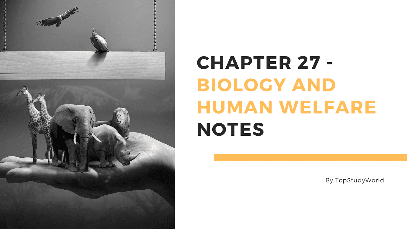 Chapter 27 - Biology and Human Welfare Notes in PDF [12th