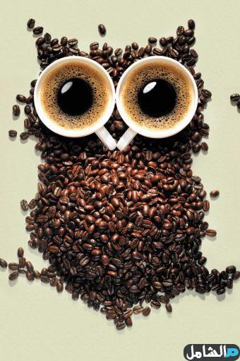 صورة بومة مرسومة بالقهوة