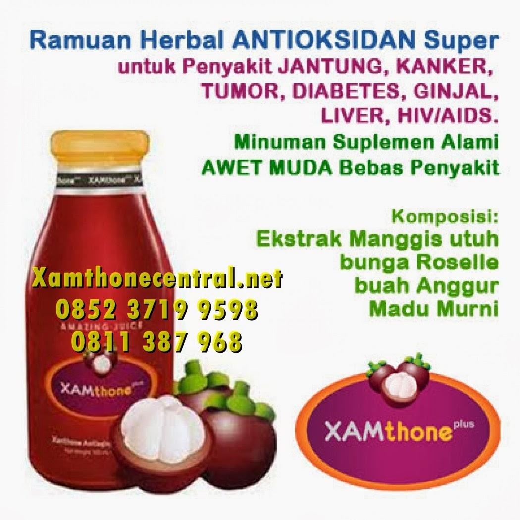 Xamthone, Xamthone Plus, Obat Herbal Xamthone, Khasiat