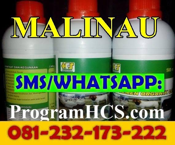 Jual SOC HCS Malinau
