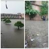 बारिश का कहर: स्कूल-कॉलेज और शिक्षण संस्थानों को लेकर मुख्यमंत्री ने दिए यह निर्देश