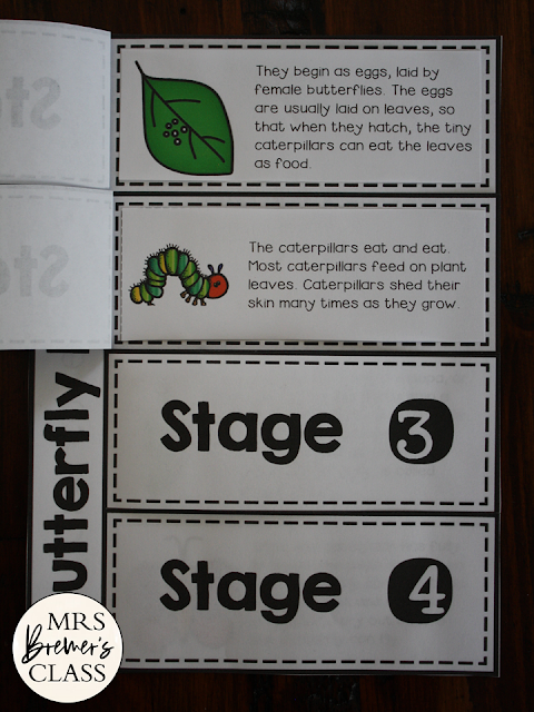 The Very Hungry Caterpillar book study activities unit and butterfly life cycle companion activities for Kindergarten and First Grade
