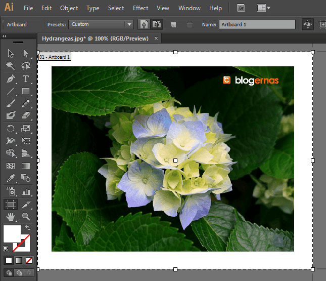 Cara Crop Gambar dengan Adobe Illustrator