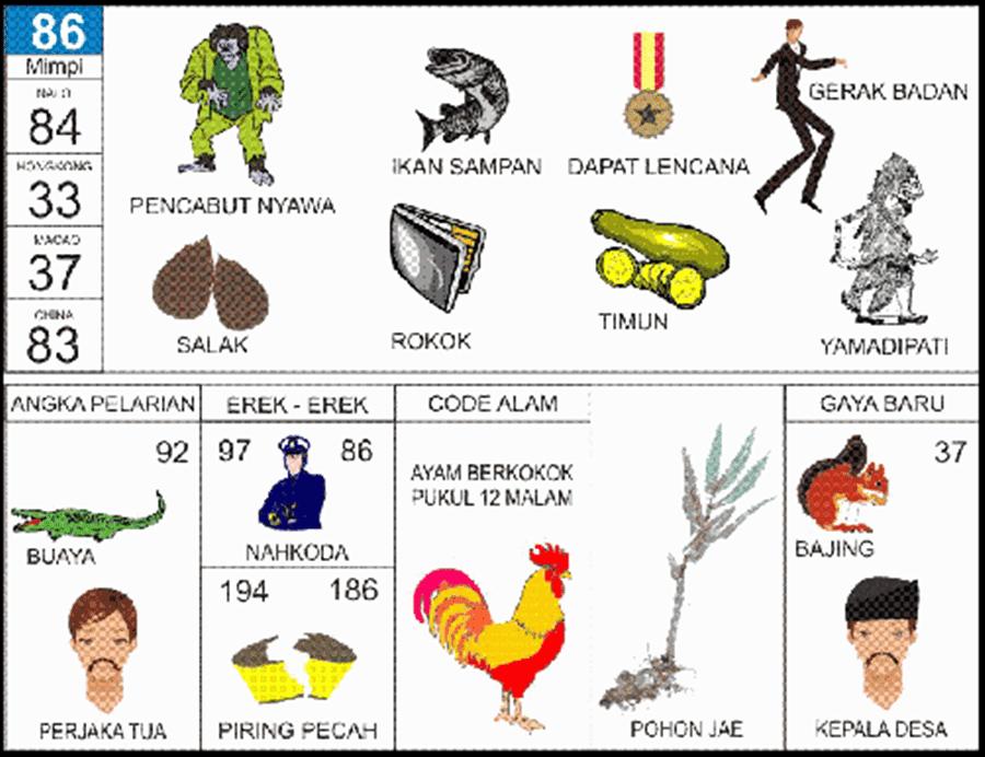 Kumpulan Materi Pelajaran Dan Contoh Soal  Kode Alam Ayam